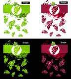 Set template icon of grapes fruit. Set label icon of grapes fruit on white and black, pattern green and red grapes, splash backdrop Royalty Free Stock Photography