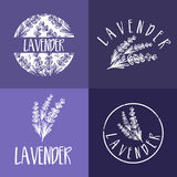 Set of template logo design of abstract icon lavender. Vector illustration stock illustration