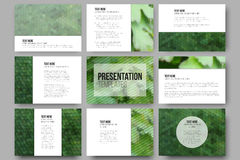 Set of 9 templates for presentation slides. Green leaves texture. Abstract multicolored backgrounds. Natural geometrical patterns. Royalty Free Stock Images