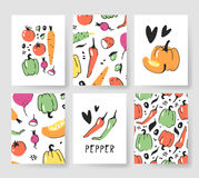 Set of templates for summer cards. Hand drawn vector patterns brochures with veggies. Actual artistic design vegetables Royalty Free Stock Photo