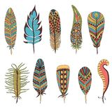 Set of ten feathers Royalty Free Stock Images