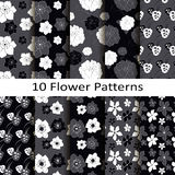 Set of ten flower patterns Stock Photos