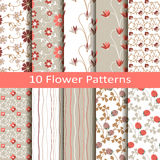Set of ten flower  patterns Stock Images