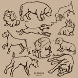 Set of  ten  hand drawn dogs Royalty Free Stock Image