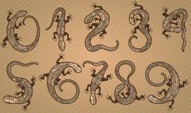 Set of ten  numbers like lizards Stock Photos