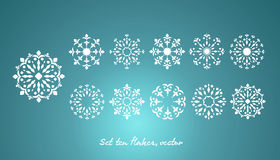 Set ten snowflake, vector Royalty Free Stock Photography