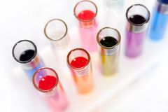 Set of test tubes in a rack, top view Royalty Free Stock Images