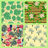 Set of texture with tropical and summer symbol  pattern in tropi Royalty Free Stock Photo