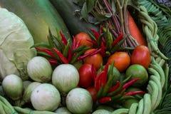 Set of thai vegetable Royalty Free Stock Photos