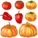 Set of Thankgivings Day vegetable icons Stock Photography