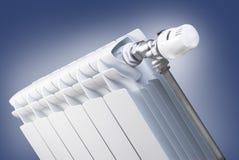 set thermostatic ventil för element royaltyfri foto