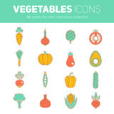 Set of thin line flat vegetable icons Royalty Free Stock Images