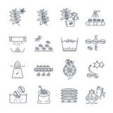 Set of thin line icons coffee production Royalty Free Stock Photography