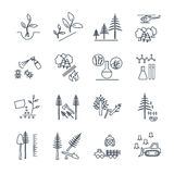 Set of thin line icons forestry and silviculture Royalty Free Stock Image