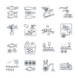 Set of thin line icons processing of fish Royalty Free Stock Images
