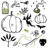 Set of things witches Stock Image