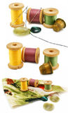 Set of threads, thimbles and needles isolated. Set of colored threads, thimbles and needles isolated on a white background Royalty Free Stock Image