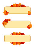 Set of three  banners with autumn leaves. Royalty Free Stock Photography