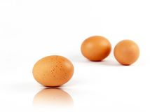 Set of three brown eggs with reflection Stock Photography
