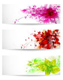 Set of three color background Stock Photography