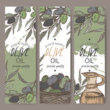 Set of three color vector olive oil label templates. Includes hand drawn elements. Great for packaging and advertising design Royalty Free Stock Images