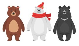 Set of three different bears royalty free illustration