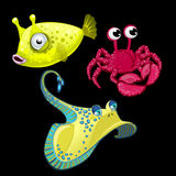 Set of three fish, Stingray, crab and cute bigeye. Set of three fish, Stingray, crab and cute yellow bigeye Royalty Free Stock Photos