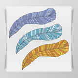 Set of three hand-drawn graphic Feathers Royalty Free Stock Images