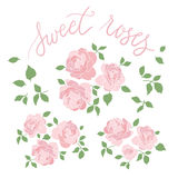 Set of three hand drawn rose bouquets  Stock Image