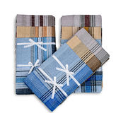 Set of three handkerchiefs Royalty Free Stock Image