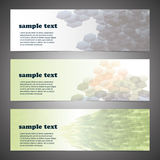 Set of three header designs Stock Photo