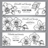 Set of three horizontal banners with beautiful orchid flowers Stock Photography