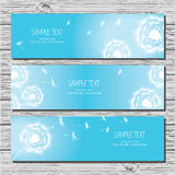 Set of three horizontal card with dandelions and dandelion seeds. On white background Royalty Free Stock Photography