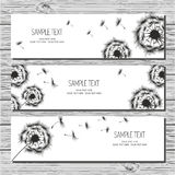Set of three horizontal card with dandelions and dandelion seeds. On white background Royalty Free Stock Photos