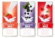 Set of three labels of berries in milk splashes. Stock Photo