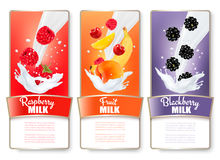 Set of three labels of fruit and berries in milk splashes. Raspberry, apricot, banana, blackberry. Vector Stock Image
