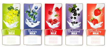 Set of three labels of of fruit in milk splashes Stock Image