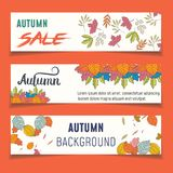 Set of three nature banners with colorful autumn leaves. vector. Illustration vector illustration