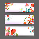 Set of three nature  banners with floral element Royalty Free Stock Images