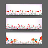 Set of three nature  banners with floral element Royalty Free Stock Image