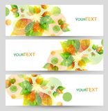 Set of three nature summer vector banners with floral elements. Royalty Free Stock Images