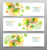 Set of three nature vector banners with floral elements Royalty Free Stock Images