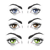 Set of three pairs of eyes, green, blue and Brown. Vector illustration Stock Photos