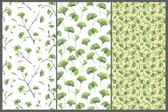Set with three seamless patterns with green leaves of ginkgo biloba. Hand drawn illustration with colored pencils. Botanical natural design for textiles stock illustration