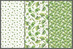 Set with three seamless patterns with green leaves of ginkgo biloba. Hand drawn illustration with colored pencils. Botanical natural design for textiles royalty free illustration