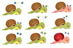 Set of three snails Stock Images