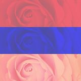 Set of three strips blurred rose background Royalty Free Stock Images