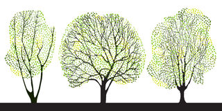 Set of three trees. Set of three pretty graphic trees Stock Photos