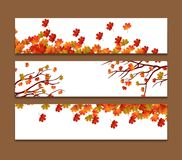 Set of three vector banners with colorful autumn leaves Stock Images