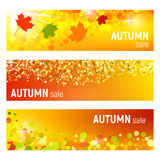 Set of three vector banners with colorful autumn leaves and circles on a orange background. Autumn banners with leaves. And colorful circles. Vector Stock Photos
